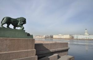 Адмиралтейская набережная лев фото Людмилы Калясиной
