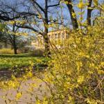 ботанический сад 011_