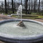сады русского музея 325_