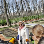 сады русского музея 394_