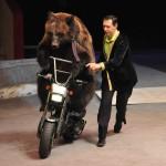 Цирк Олега Попова Фото Елены Флеровой DSC_0237