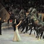 Цирк Олега Попова Фото Елены Флеровой DSC_0359