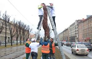 деревья на московском проспекте