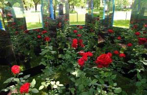 Императорские сады России фото Елены Тын 23