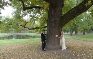 Свадьба в Александровском парке 2