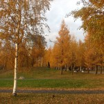 парк 300 летия 1