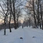 Парк Авиаторов Фото Калясиной Людмилы DSC_0512
