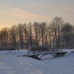 Парк Авиаторов Фото Калясиной Людмилы DSC_0555