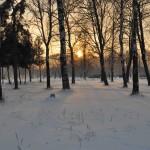 Парк Авиаторов Фото Калясиной Людмилы DSC_0571