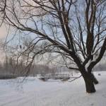 Парк Авиаторов Фто Калясиной Людмилы DSC_0540