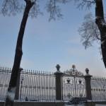 Снегопад Январь 2016 Петербург Фоо Калясиной Людмилы DSC_0825