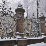 Снегопад 2016 Петербург январь  Фото Калясиной Людмилы DSC_0631
