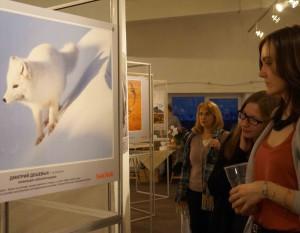 Выставка Дикая природа России Фоо Владимира Желтова  февраль 2016 DSC05429
