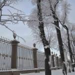 Зима Летний сад DSC_0841