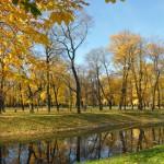 Михайловский сад осень 2013