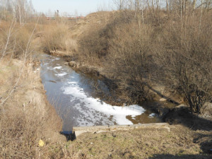 Муринский ручей