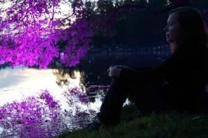 Ночь музыки Гатчина 2016 Фото Владимира Желтова DSC01527