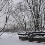 Парк Победы Блокада Фото Калясиной Людмилы DSC_0073