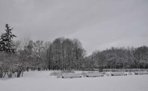 Парк Победы Блокада Фото Калясиной Людмилы DSC_0140