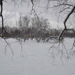 Парк Поеды Блокада Фото Калясиной Людмилы DSC_0097