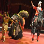 Цирк на Есенина DSC_0903